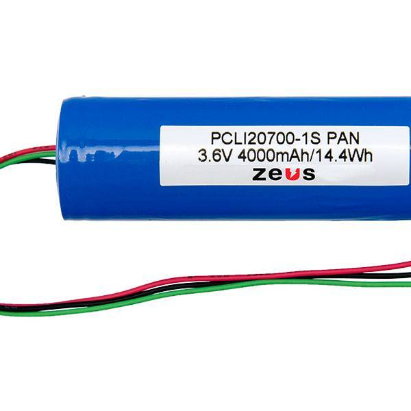 ZEUS_LION_PCLI20700-1S-PAN_2